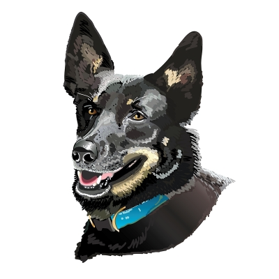 Custom Pet Portraits - post 2